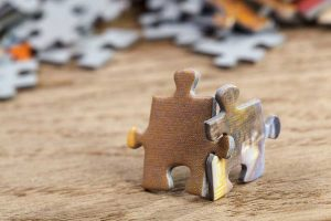 Puzzling the Pieces